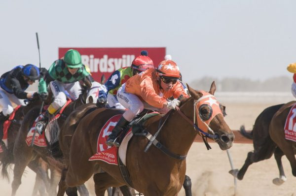warrnambool to birdsville races